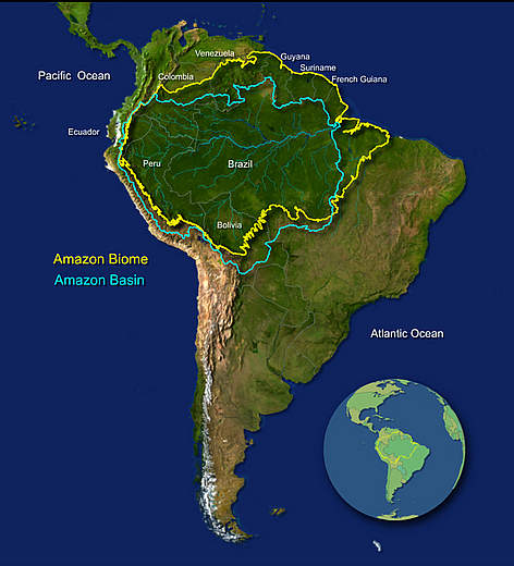 Amazon rainforest a trip of a lifetime manaus is a major city that is in the middle of amazon rainforest this city is the main entrance to visit brazilian amazon we flew to manaus from rio de gumiabroncs Gallery